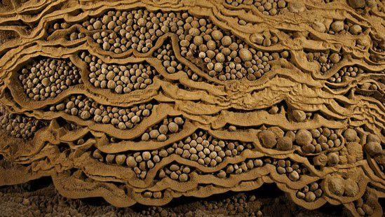 Hang động ngọc trai trong hang Sơn Đoòng