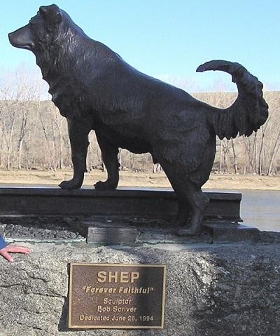 Tượng bằng đồng của chú chó Shep