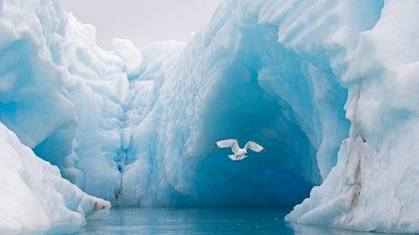 Đại dương nào nhỏ nhất thế giới? - Bắc Băng Dương