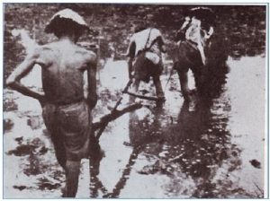 chính sách khai thác thuộc địa của thực dân pháp ở việt nam sau chiến tranh thế giới thứ nhất
