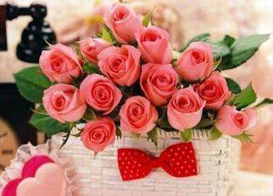 hình ảnh hoa sinh nhật đẹp nhất thế giới
